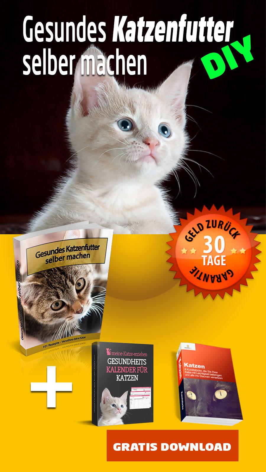Katzenfutter selber machen - ebook